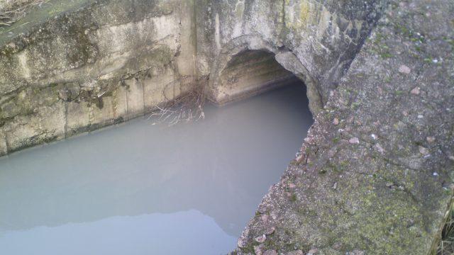 Депутати з групи «Чисте місто» хочуть бачити висновки поліції за рік щодо розслідування забруднення водойм на Бердичівщині. ВІДЕО