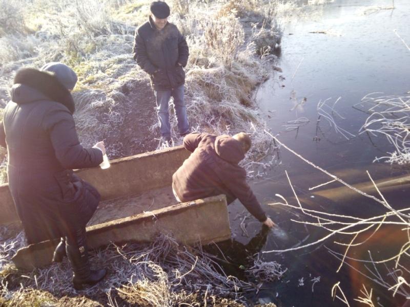 За результатами аналізів екологічне забруднення водойми у Бердичеві в сотні разів перевищує норму ІНФОГРАФІКА